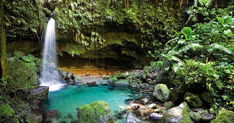 Dominica Travel Guide